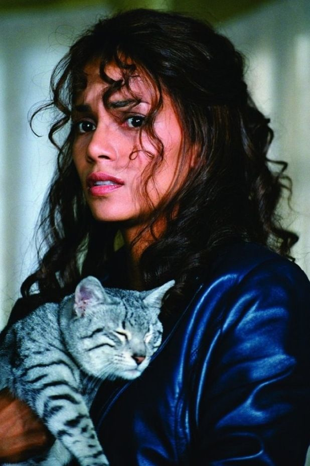 Halle Berry Catwoman Movie Catwoman Swag Cats Halle Berry Halle