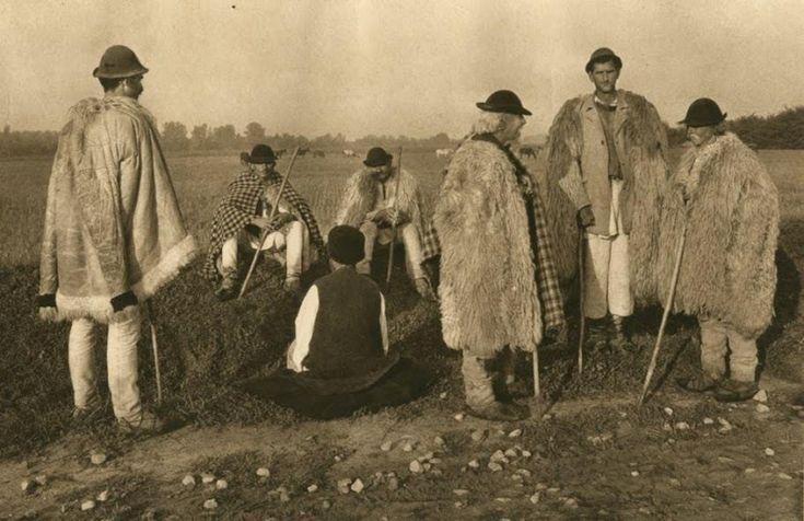 Ciobani din Novaci
