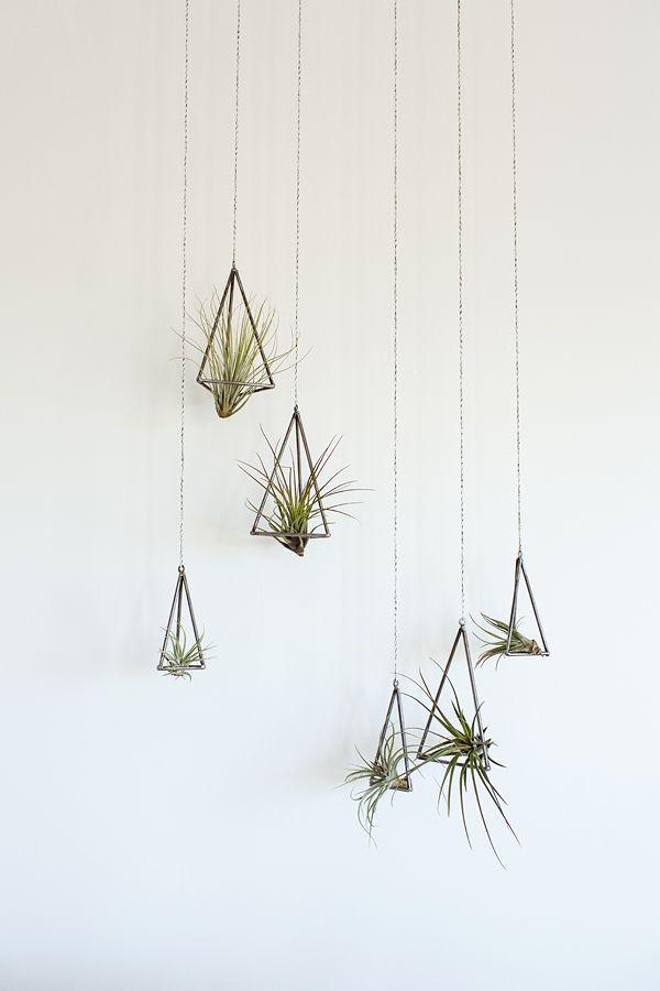 Creative Q&A: Kelly DeWitt   Tara Hurst Design