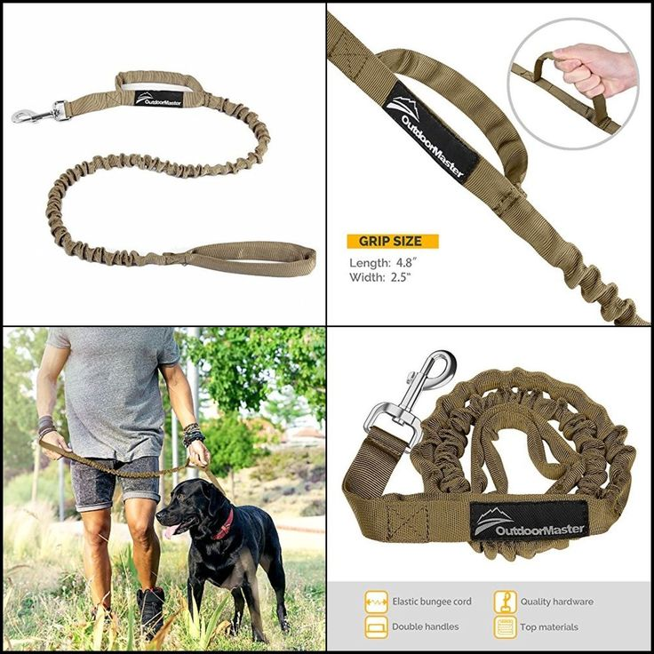 Tactical Stretchy Bungee Dog Leash Soft Padded Handle Improve Dog Safety&Comfort #OutdoorMaster