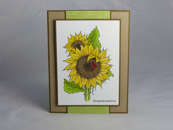 Congratulate someone special with a hand-colored sunflower and ladybug card. This can be given to someone who has just received good news, is