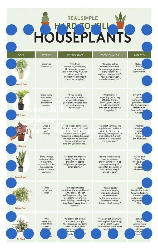 Das Starten Einer Neuen Lebensweise Und Gesundheit Ist Wie Das Beginnen Einer Reise Daher Ist Es Hilfreich Eine Karte Zu Haben D In 2020 Plants Water Plants Replant