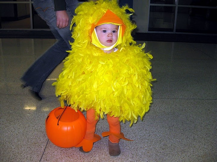 homemade baby chick costume front