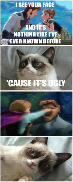 grumpy cat frozen love is an open door - Google Search