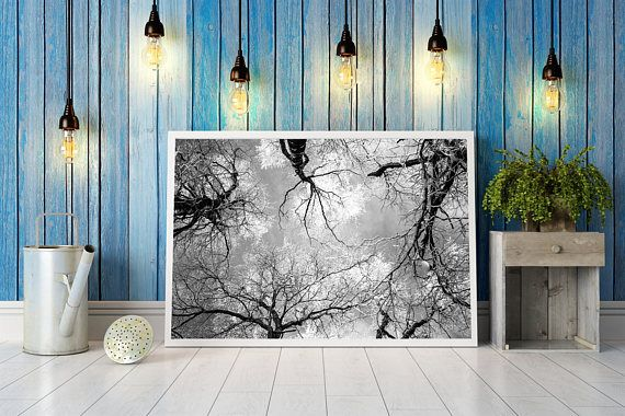 Check out this item in my Etsy shop https://www.etsy.com/listing/533776673/digital-image-tree-top