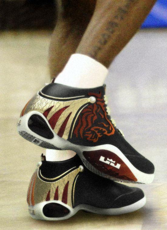 King james concept lebron james shoes pinterest