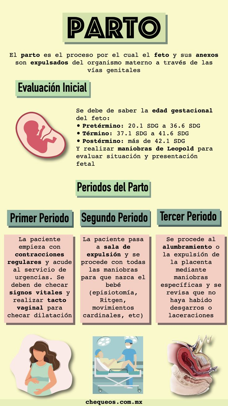Pin En Ginecología Y Obstetricia