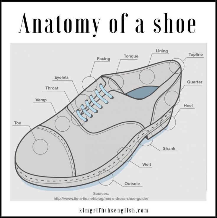 Anatomy Of A Shoes From The Article If The Shoe Fits