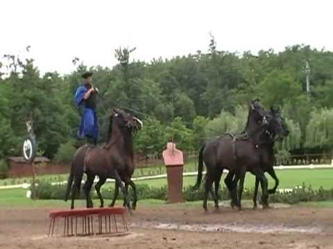 VIDEO of Hungarian horsemen, as in THE GOOD MASTER by Kate Seredy. For fun, multisensory ways to connect kids to this story, get instant access to the LitWits Kit at https://litwits.com/the-good-master/