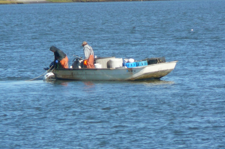 17 images about wood crab boats and the sort on for Crab fishing boats for sale