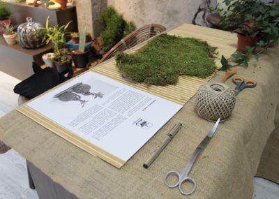 Terraqua Atölye'de Kokedama Workshop
