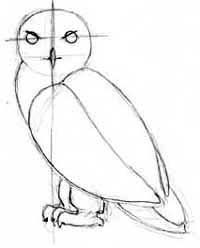 How to Draw Hedwig, Harry Potter's Snowy Owl