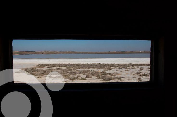 Lillo lagoon