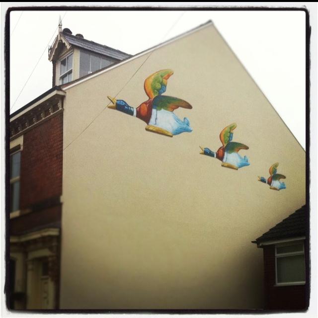 #birds #house #Sheffield #geese #wall #art #street