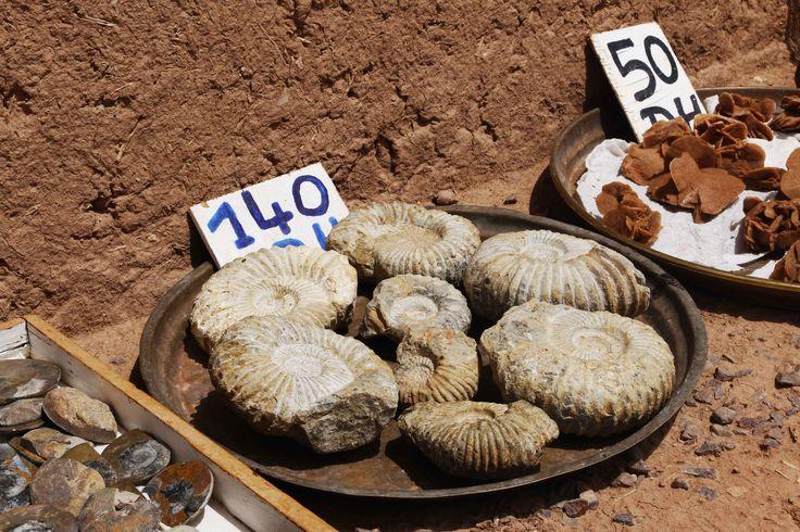 Fósiles de camino al Ksar de Ait Ben Hadu en Marruecos, una larga excursión realizada desde Marrakech en el año 2014. Ait Ben Hadu y Ouarzazate son las puertas del desierto. Visita mi página web para leer mis aventuras por Marruecos: https://unachicatrotamundos.wordpress.com/2016/08/03/ait-ben-hadu-y-oarzazate-la-puerta-del-desierto/