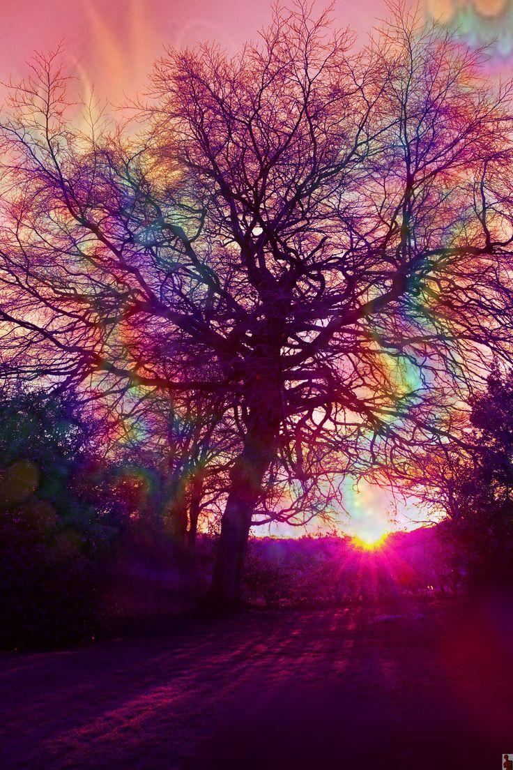 pureblindingcolour — pureblindingcolour