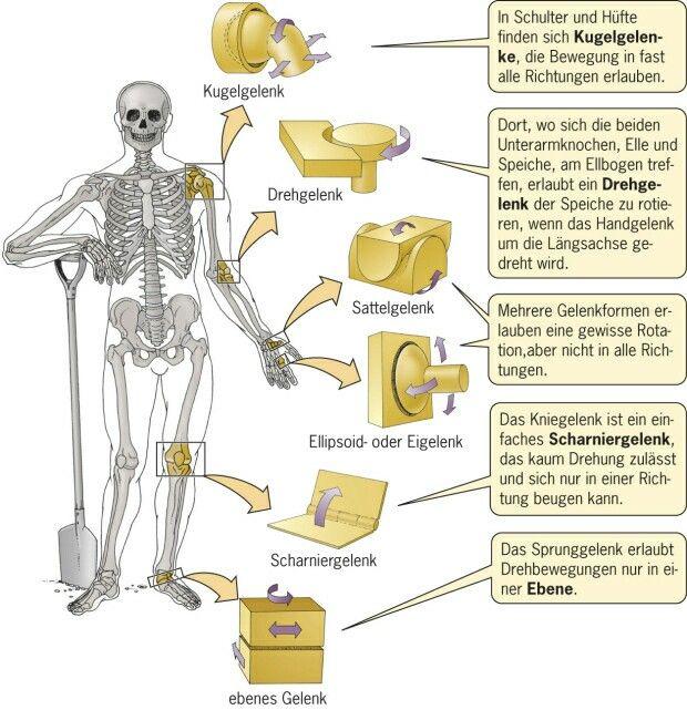 Pin von Gesundheit und Harmonie durch auf Organetik