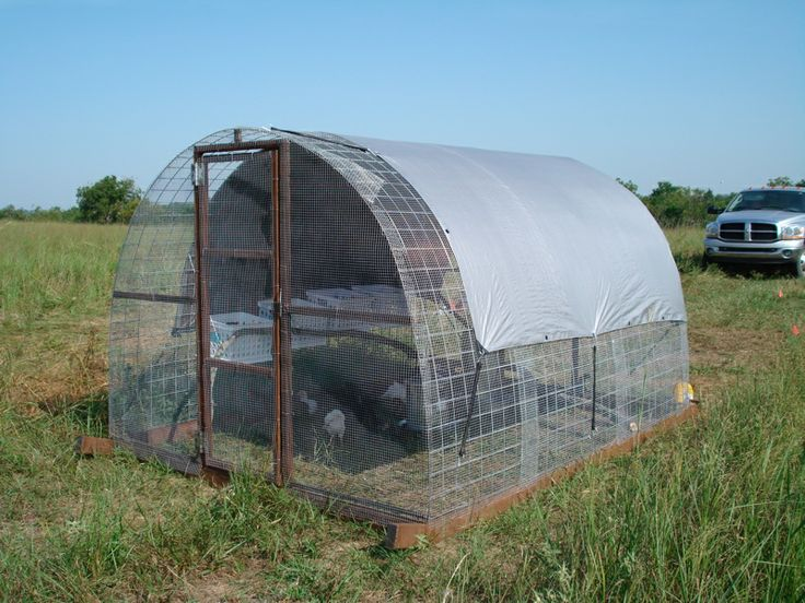 17 best images about chicken tractors on pinterest for Portable coop