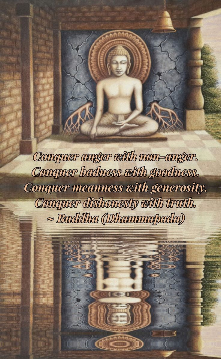 """Conquer anger with non-anger. Conquer badness with goodness. Conquer meanness with generosity. Conquer dishonesty with truth."" - Buddha (Dhammapada)"