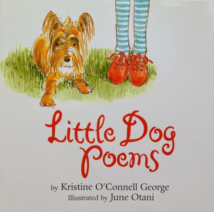 Creating Readers and Writers: Book Talk: Little Dog Poems