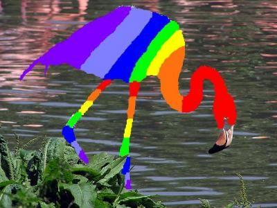 rainbow flamingo | Taste The Rainbow Flamingo - Story ...