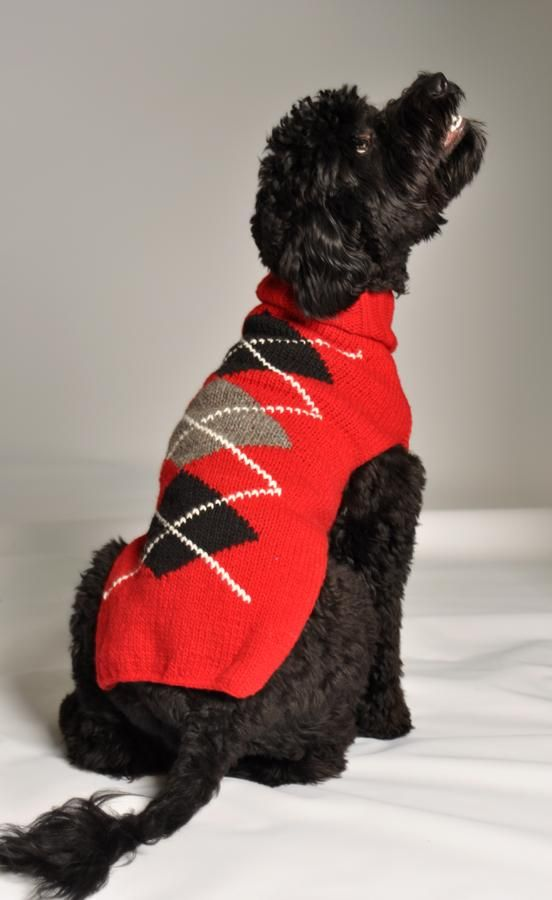 Best Hand Knitted Dog Sweater Ever! Red Argyle - Chilly Dog Sweaters www.chillydogsweaters.com