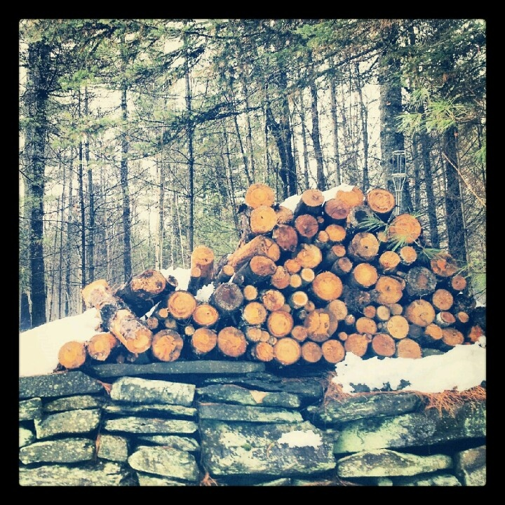 Maine Woods! :) everything has the potential to be beautiful.  It's HOW you look at it that changes what it looks like.