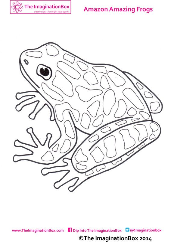 1000 Ideas About Frog Coloring Pages On Pinterest
