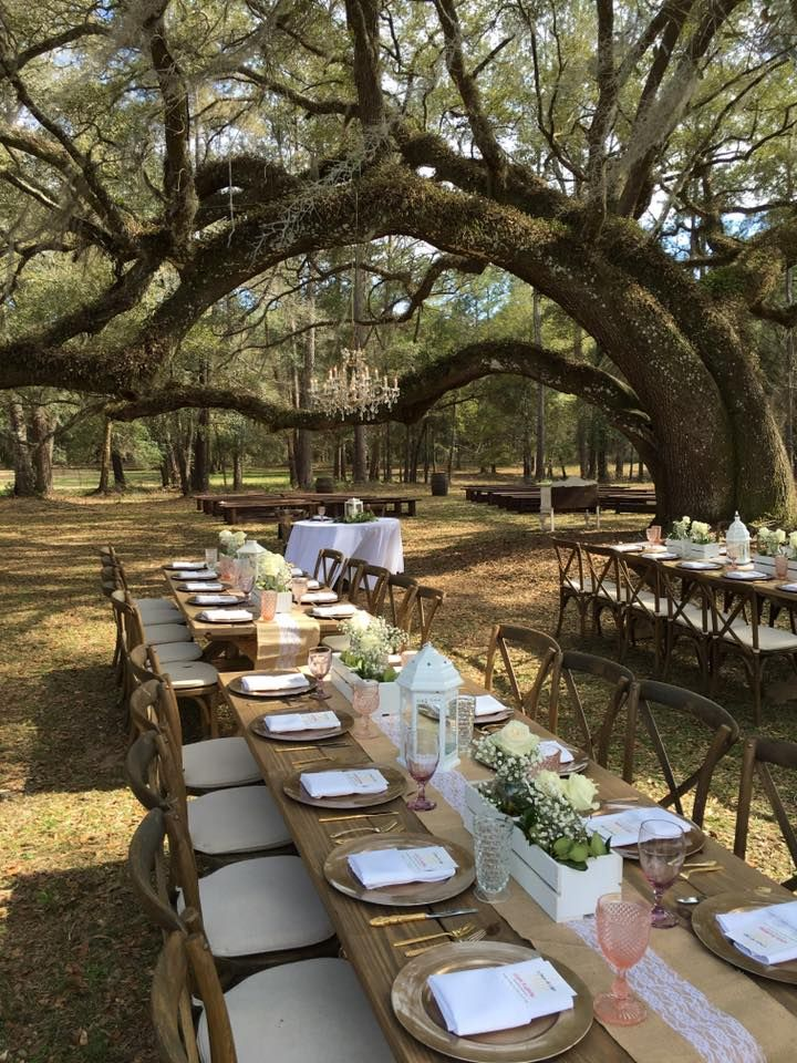 Outdoor Reception At Shiloh Farm In Tallahassee Fl Shiloh Farm Pinterest Shiloh Wedding