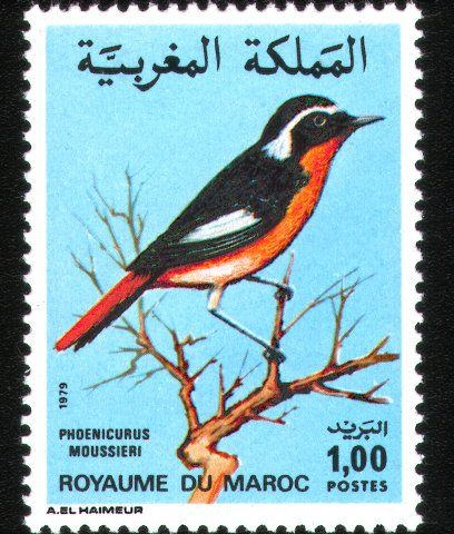 Postage stamps and postal history of Morocco - Wikipedia, the free ...