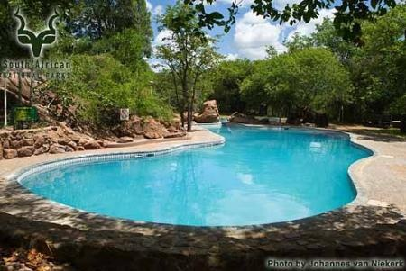 KNP - Mopani - Pool