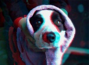 http://3dprinteray.com/i-am-dog-sister/