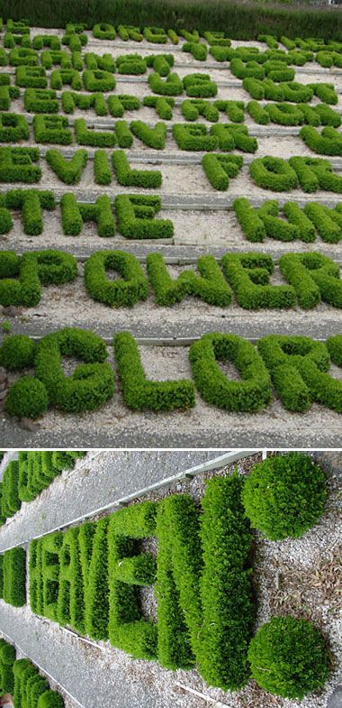 Type Tuesday: Hedges — UPPERCASE