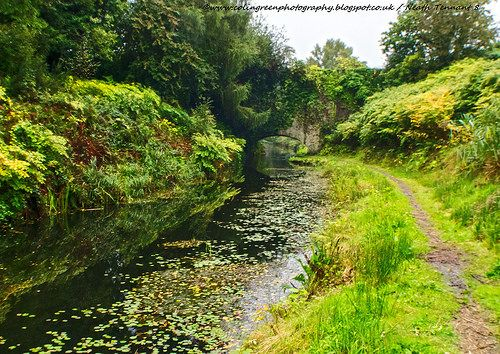 Colin Green Photography: Neath and Tennant Canal, South Wales.