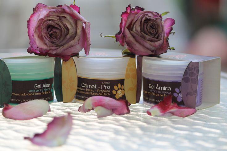 Geles y Cremas con propiedades cicatrizantes y antiinflamatorias