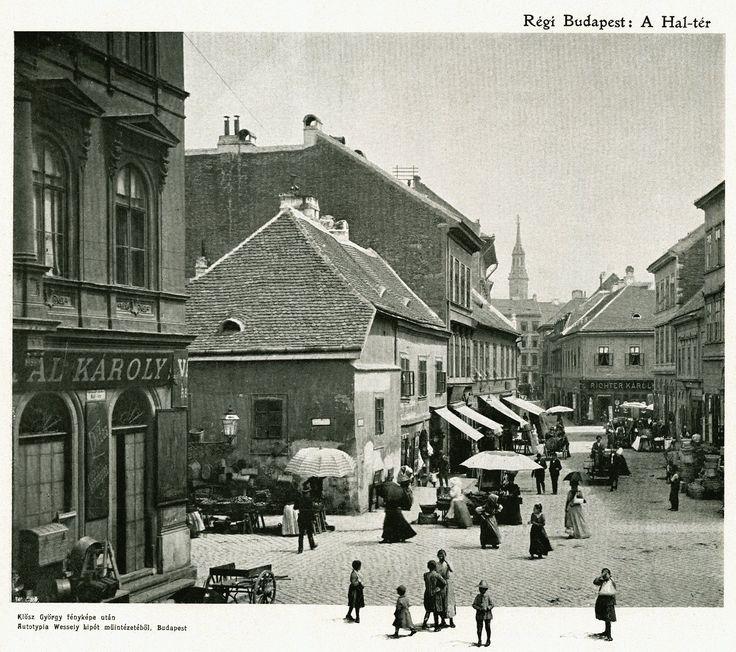 Budapest, V. kerület, Hal tér 1895