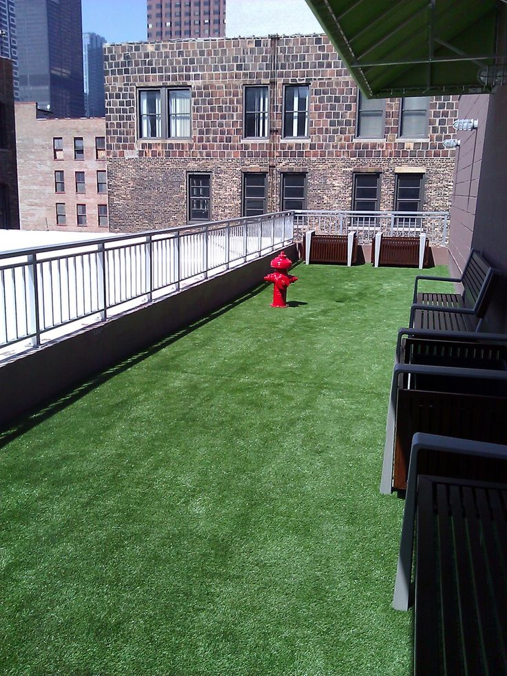 Superior Best 25+ Fake Grass For Dogs Ideas On Pinterest | Artificial Grass For  Dogs, Fake Turf And Balcony For Dogs