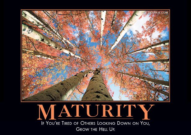 Maturity Demotivator - Tired of other's looking down on you?  Grow the heck up!