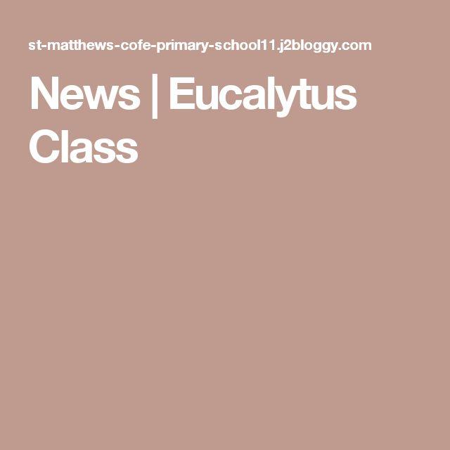 News | Eucalytus Class