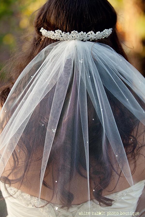 OMG love love love the hidden mickey detail in the veil!!