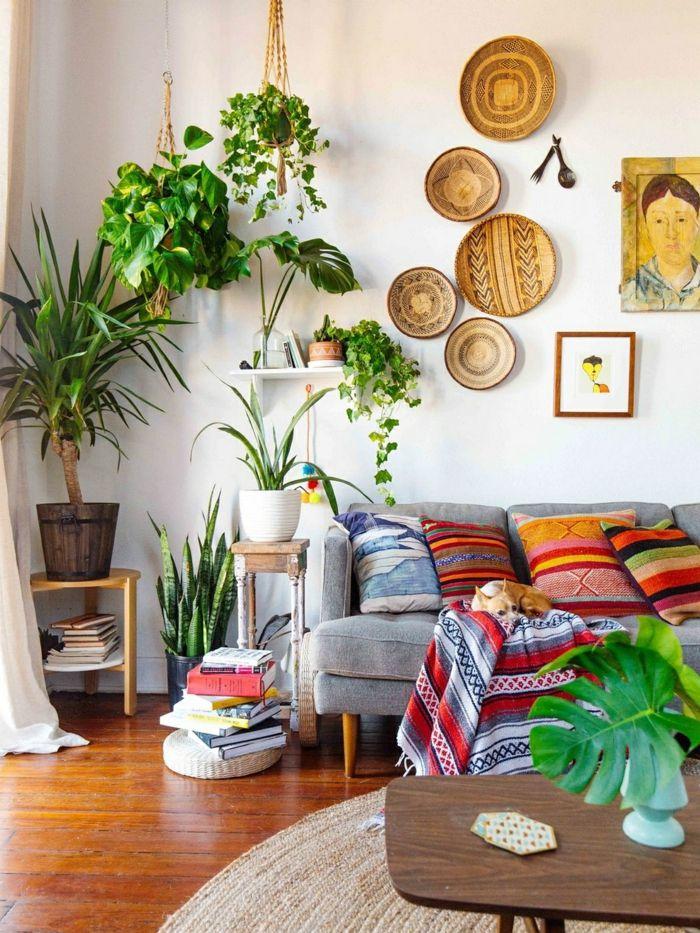 Pflanze mit großen Blättern – ein herrlicher Hingucker zu Hause