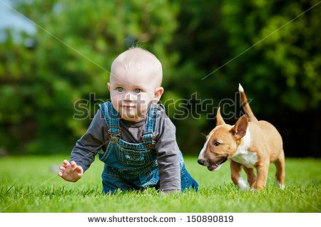 Garden Dog Family Fun Stock Photos, Images, & Pictures | Shutterstock