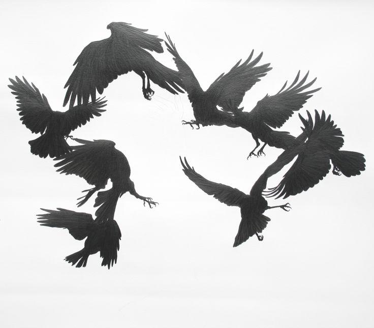 Crow Surround. Graphite on paper
