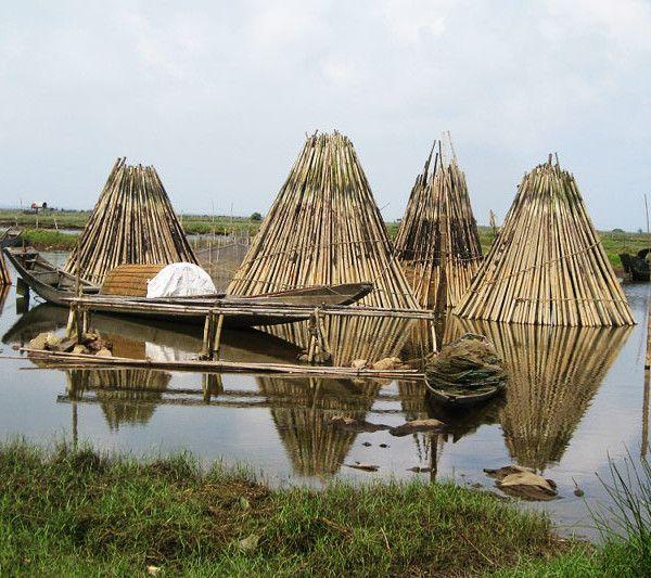Hue-Tam-Giang-Lagoon-2