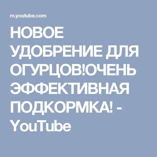 НОВОЕ УДОБРЕНИЕ ДЛЯ ОГУРЦОВ!ОЧЕНЬ ЭФФЕКТИВНАЯ ПОДКОРМКА! - YouTube