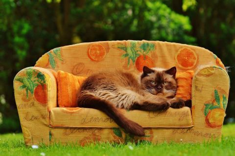Sofa online kaufen | Möbelin: Teak Möbel, Tische, Stühle und Gartenmöbel