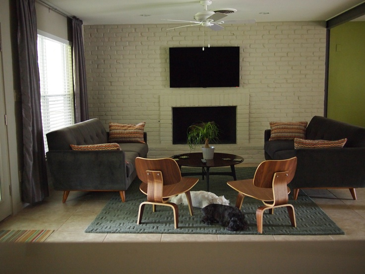 Our new sofas by Thrive Furniture, I love them and to add that special touch here are Meko and Gizmo enjoying the space
