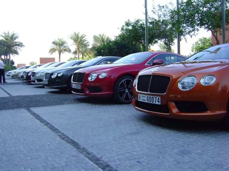 7 best bentley images on pinterest dream cars cars and dreams bentley sciox Images