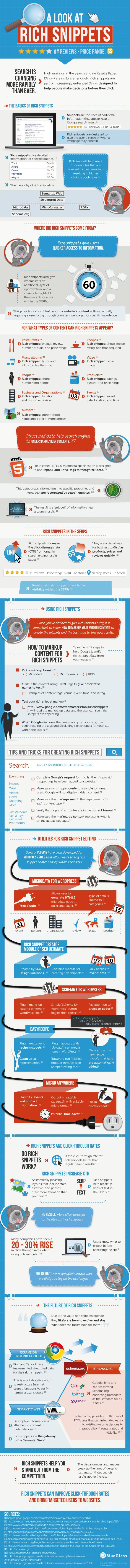 Detailed rich snippets infographic: Digital Marketing, Rich Snippets, Reputation Management, Website, Web Site, Visual Guide, Social Media, Search Engine Optimism, Seo Infographic