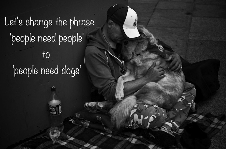 People need dogs: Animales Capers, Mans Best Friend, Animal Holidays